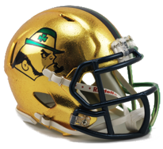 Notre Dame Fighting Irish NCAA Mini Speed 2015 HydroSkin