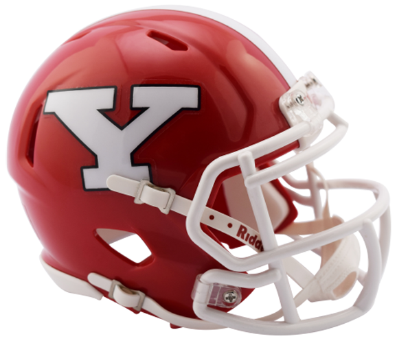 Youngstown State Penguins NCAA Mini Speed 2017
